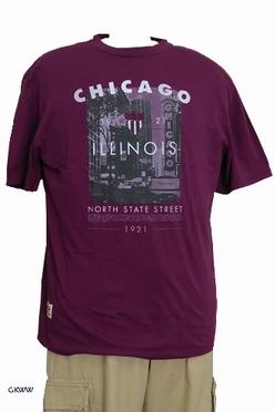 T-shirt 'CHICAGO', aubergine