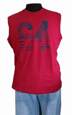 Ahorn Tanktop 'Palm 64', donkerrood