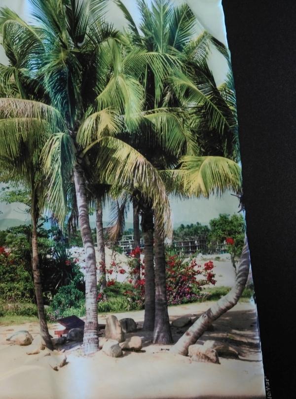 Zwemshort Palmenstrand fotoprint, veelkleurig